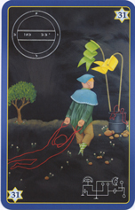 King Solomon Oracle Cards, 31